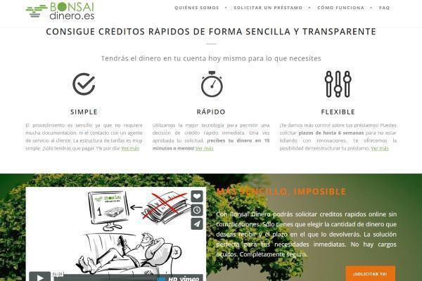 creditos-rapidos-bonsai-dinero